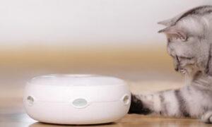 猫の友社 公式ホームページ