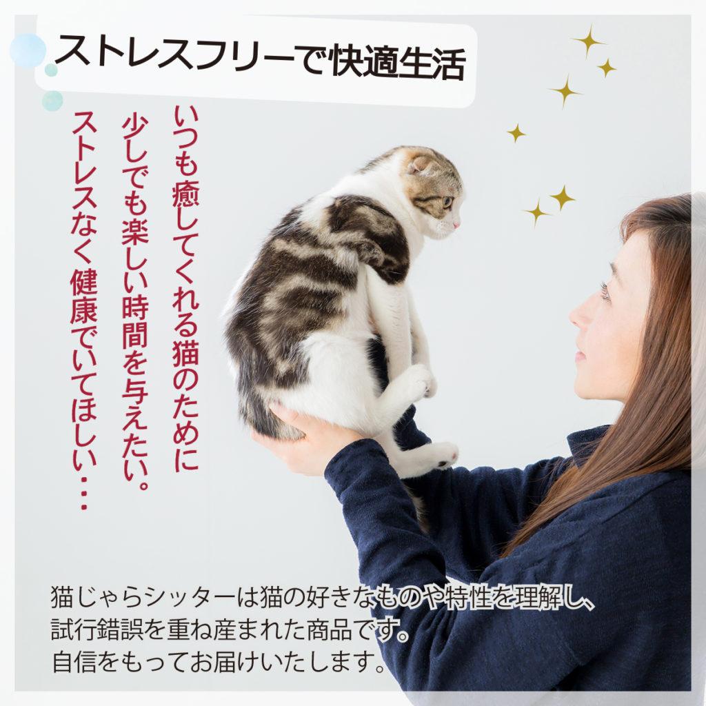 猫じゃらシッター
